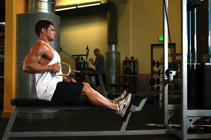 Pulley basso – esecuzione, muscoli coinvolti e consigli del personal trainer