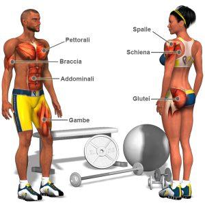 come aumentare la tua massa muscolare