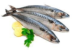 pesce-azzurro-dimagrire