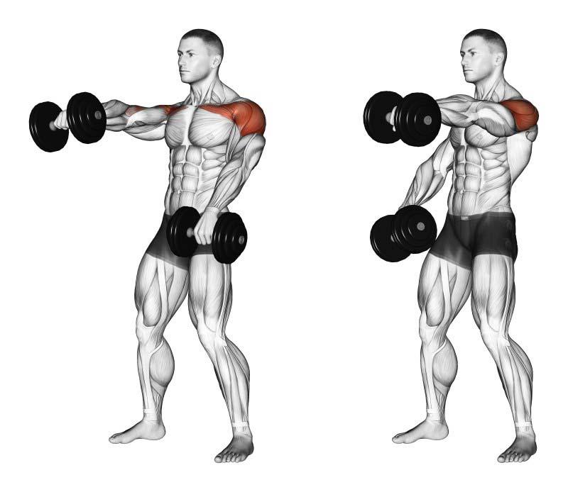 alzate-frontali-esercizio