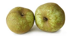 calorie-mela-renetta