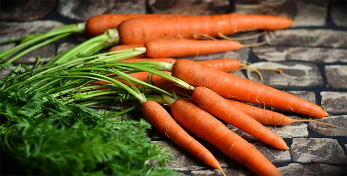 le-carote-fanno-ingrassare